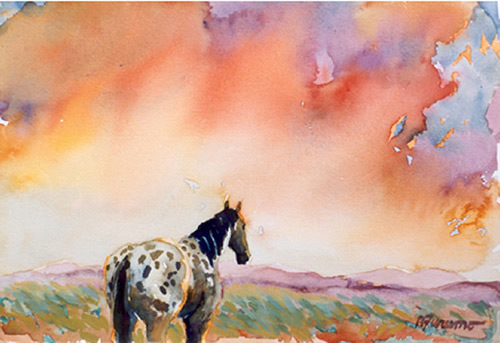 Appaloosa Sunset