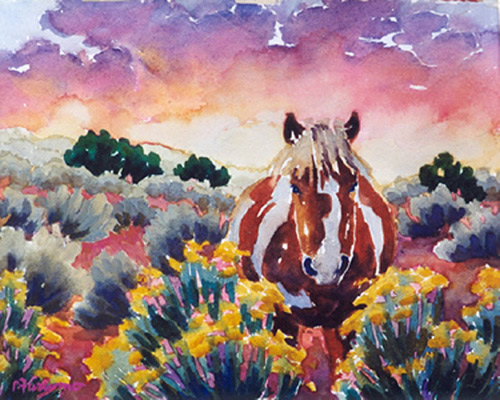 Rabbit Brush Pony